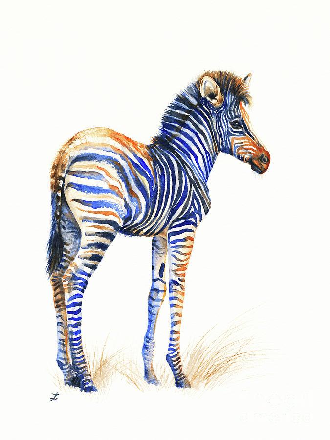 Baby Zebra Painting