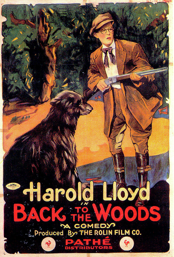 back To The Woods Movie Poster 1919 Mixed Media
