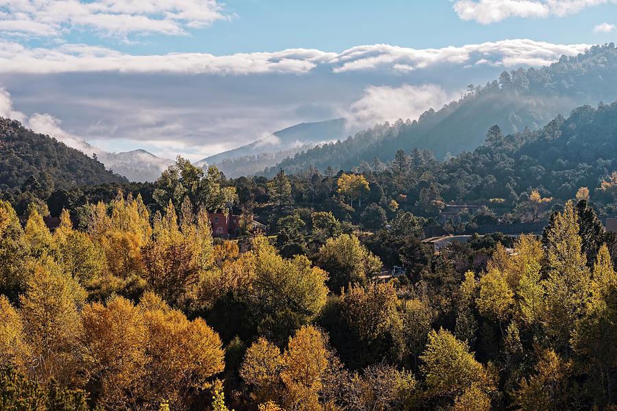 Backlit Aspens and Cottonwoods of Randall Davey Audubon Center Santa Fe New Mexico Sangre de Cristo  by Silvio Ligutti