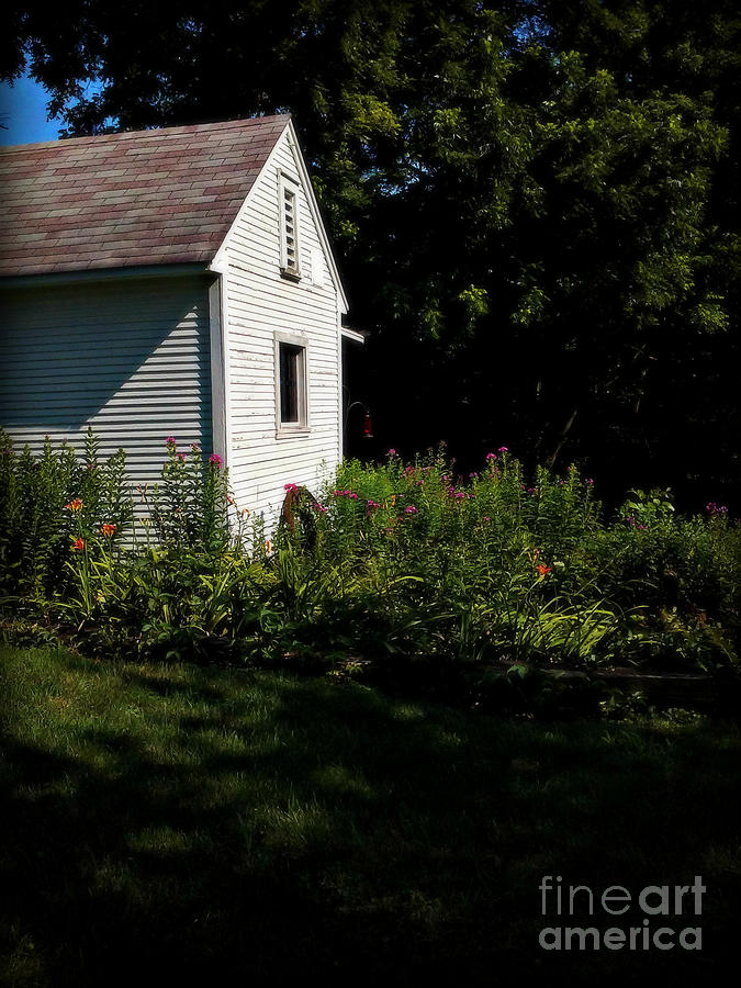 Grass Photograph - Backyard Flowers Morning Sunlight - Soft by Frank J Casella