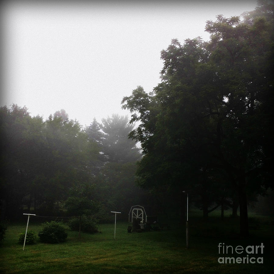 Nature Photograph - Backyard Morning Fog by Frank J Casella