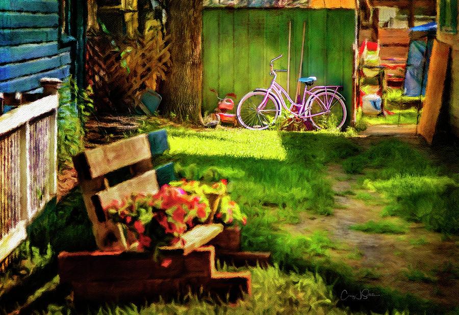 Backyard Pink Lady Schwinn by Craig J Satterlee
