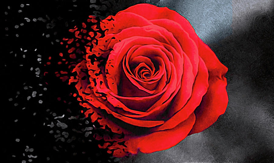 Bad Romance by Susan Maxwell Schmidt