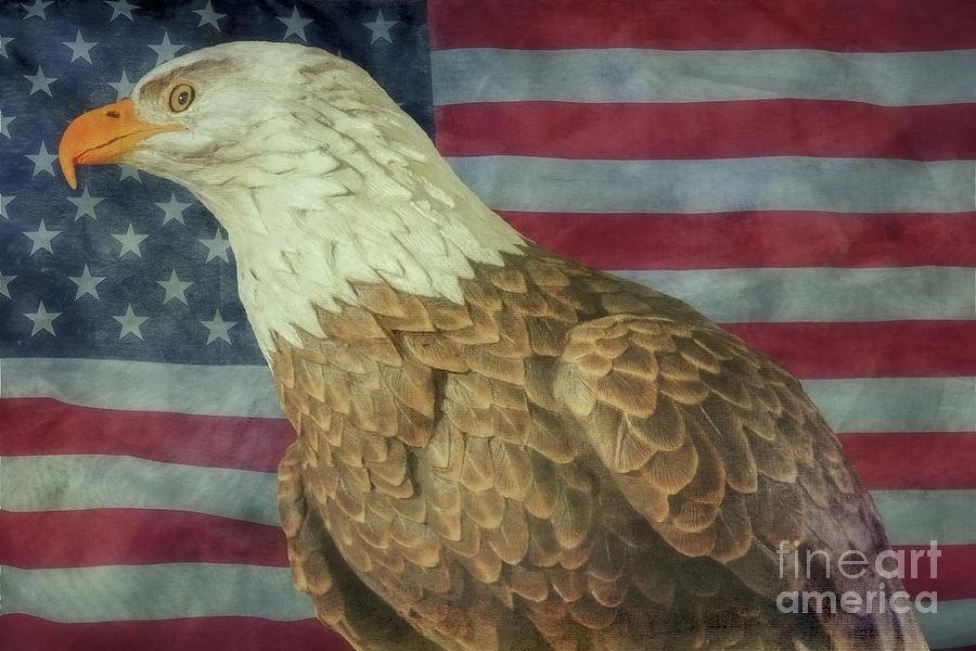 Bald Eagle And Us Flag Digital Art