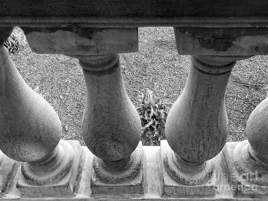 Baluster Art - Study I Photograph