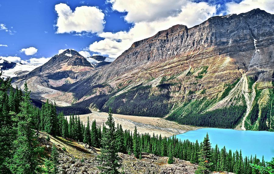 Banff Peyto Scenic View Photograph