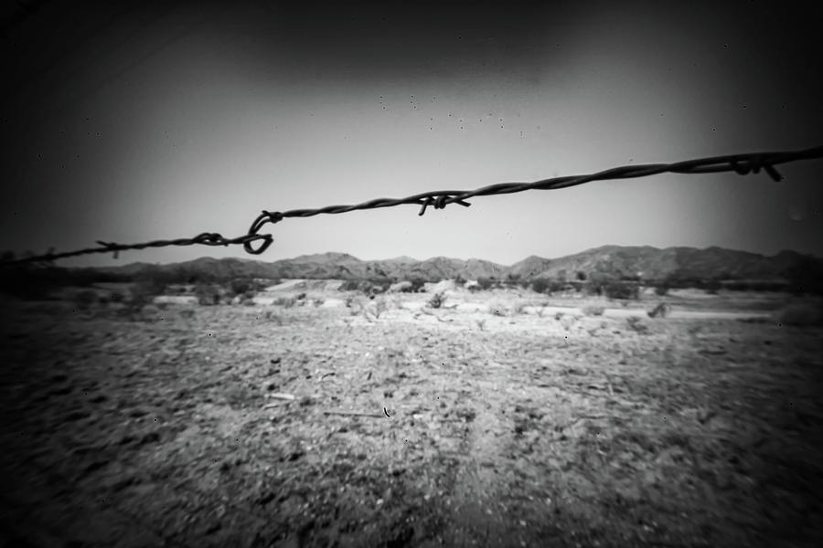 Barbed Photograph