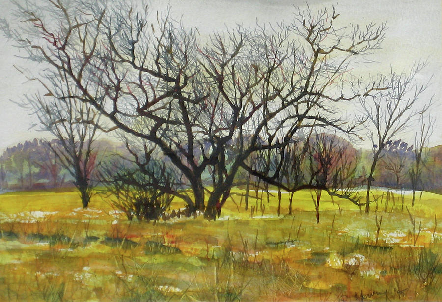 Bare Trees - Original Watermedia 14x10 Painting by Doug Jerving