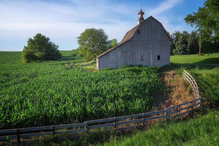 Barn And Corn Photograph