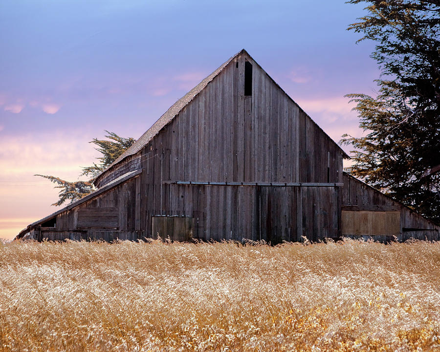 Barn At Caspar Beach by William Havle