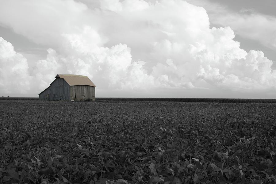 Barn Cumulus by Dylan Punke