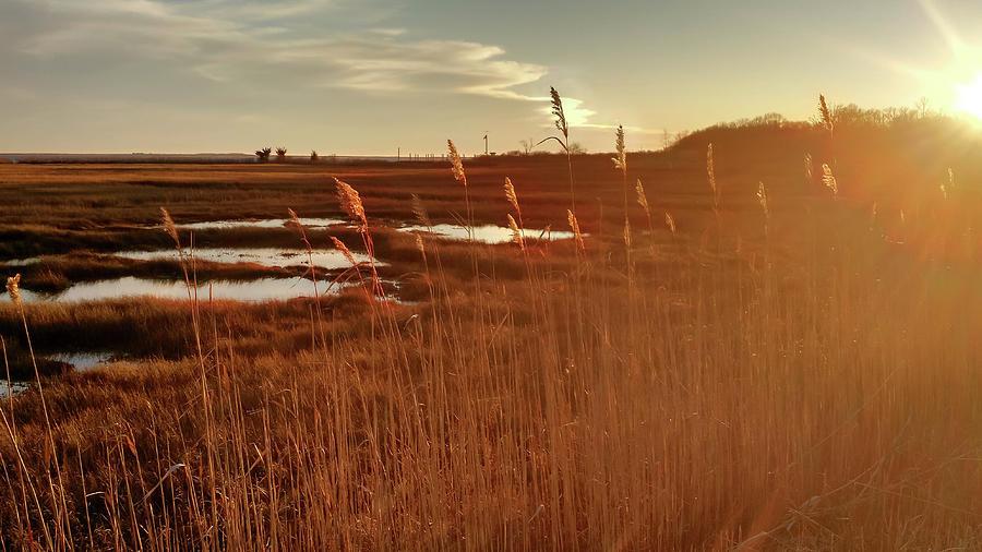 Barn Island Golden Sunset - Pawcatuck Ct Photograph
