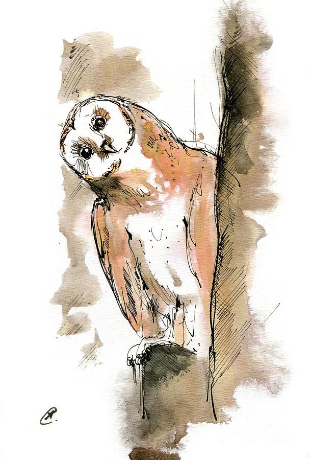 Barn owl 2019 12 01 by Angel Ciesniarska