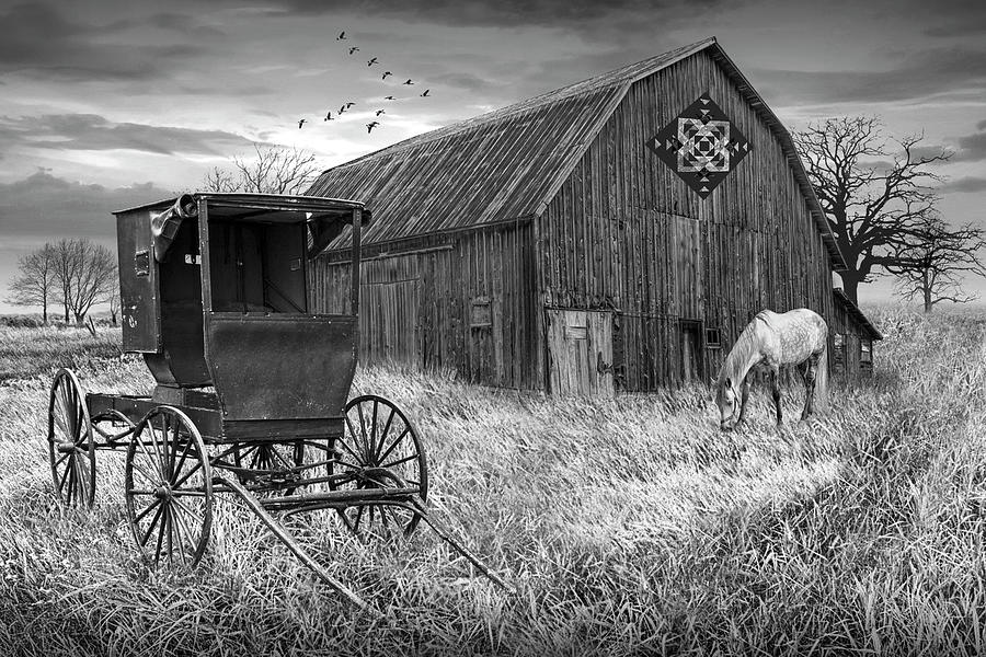 Barn Quilt With Amish Buggy And Horse In Black And Whiteon Amish Photograph