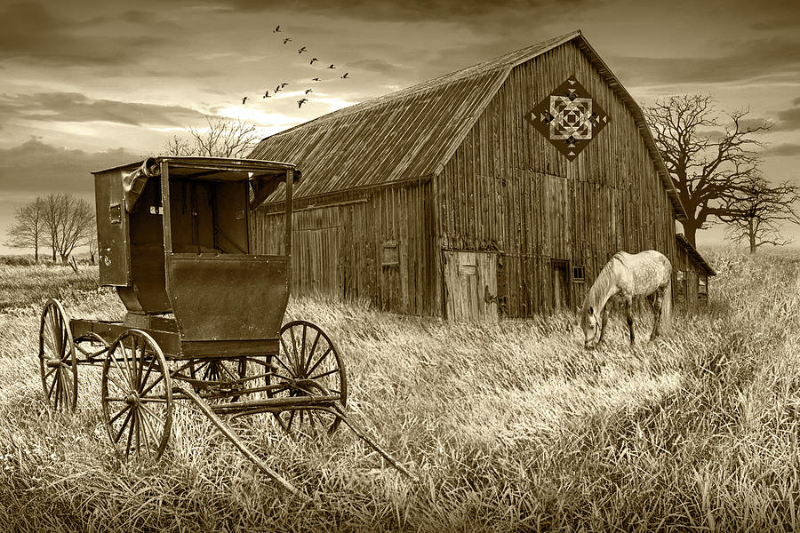 Barn Quilt With Amish Buggy And Horse In Sepia Tone On Amish Far Photograph