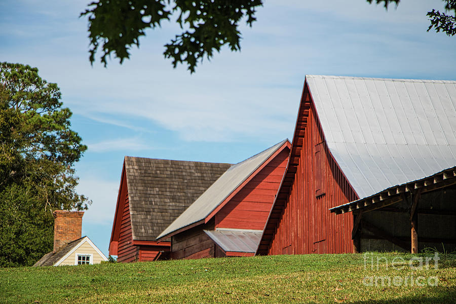 Barn Roof-lines Photograph