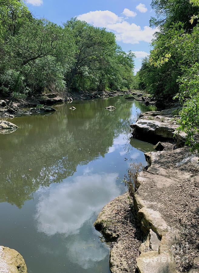 Barton Springs Greenbelt Nw Quadrant May 2020 Photograph