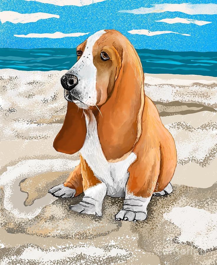 Basset By The Beach Drawing