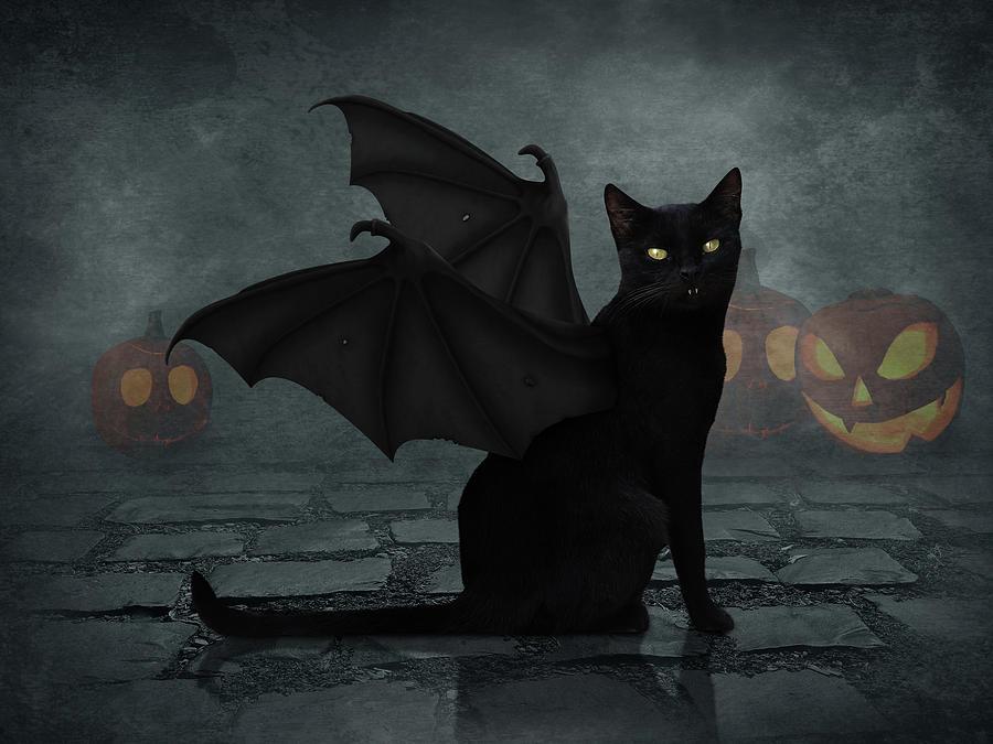 Bat Cat Digital Art