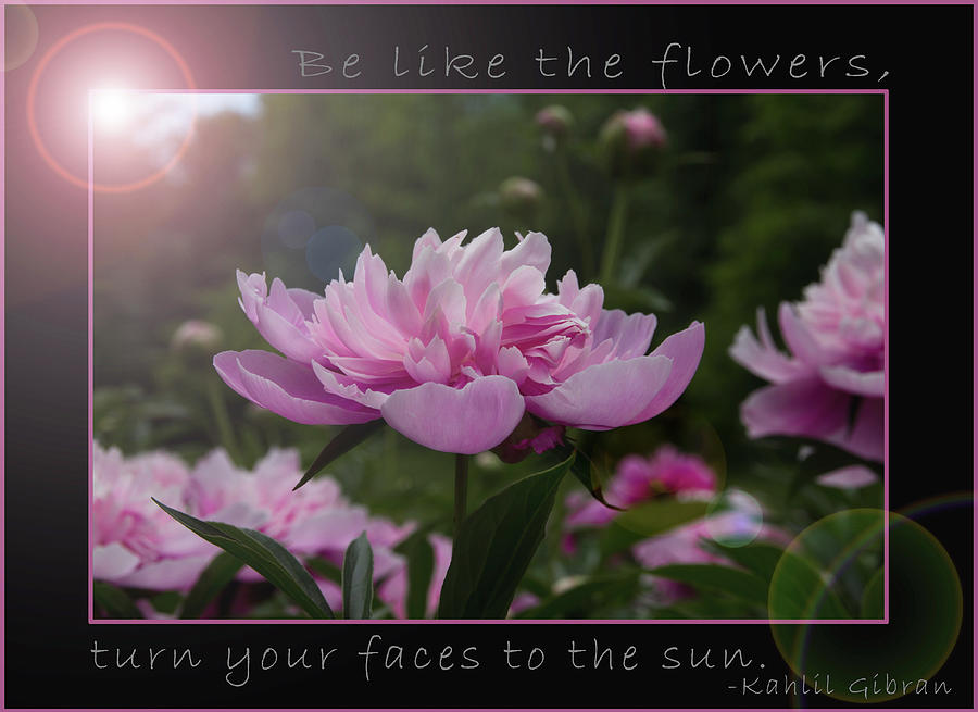 Be Like The Flowers... by Patti Deters