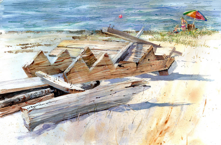 Beach Debris by P Anthony Visco