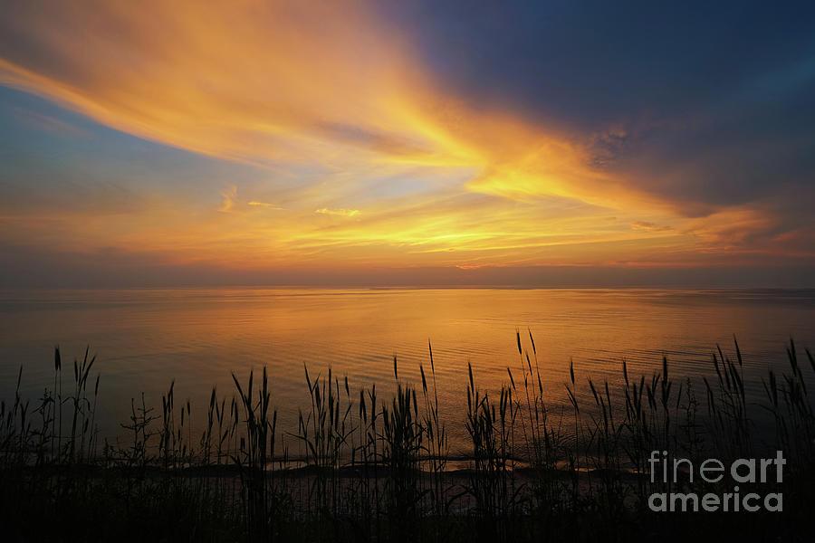 Beach Grass Sunset Photograph