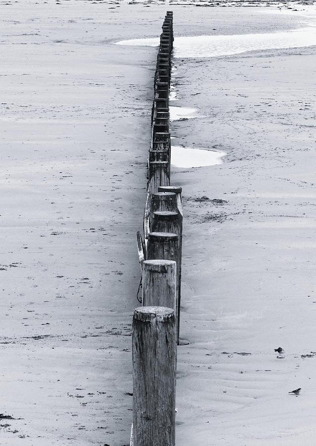 Beach Groynes Monochrome Photograph