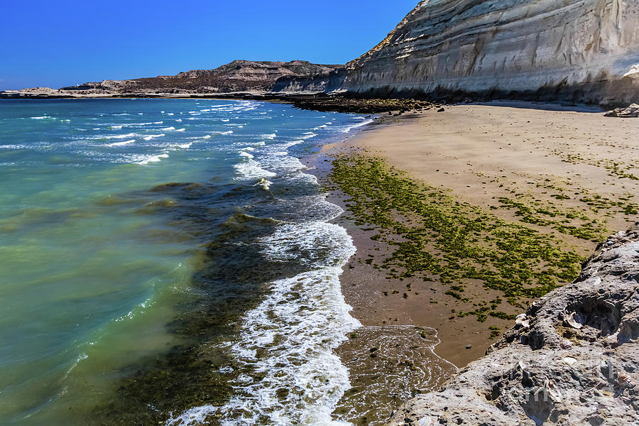 Beach in Puerto Piramides, Argentina by Lyl Dil Creations