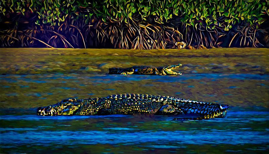 Art print POSTER Crocodile in North Queensland