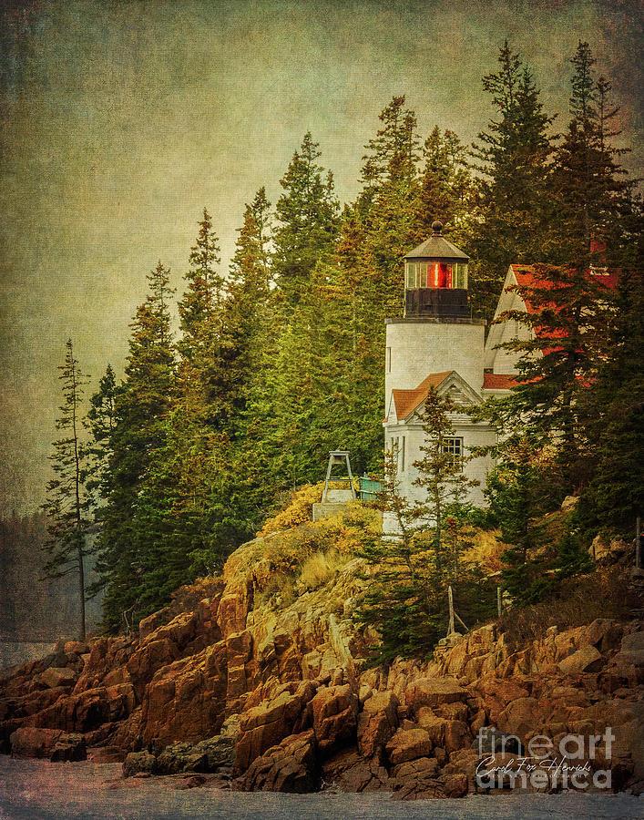 Lighthouse Digital Art - Beacon From Bass Harbor Head Light by Carol Fox Henrichs