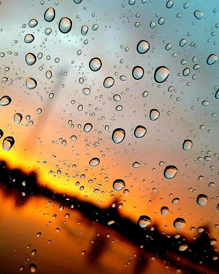 Rain Photograph - Beads Of The Morning by Sarah Szymanski
