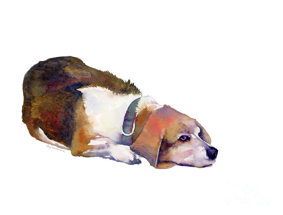Beagle Thoughts Painting