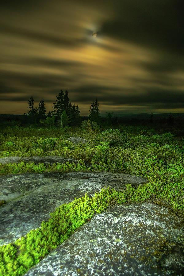 Bear Rocks Full Moon 2 Photograph