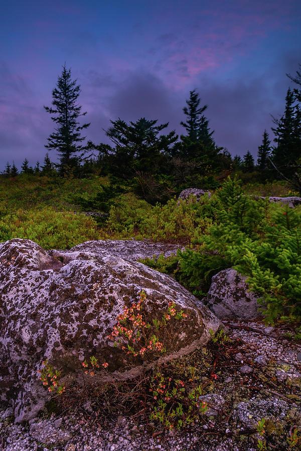 Bear Rocks Mornings Photograph