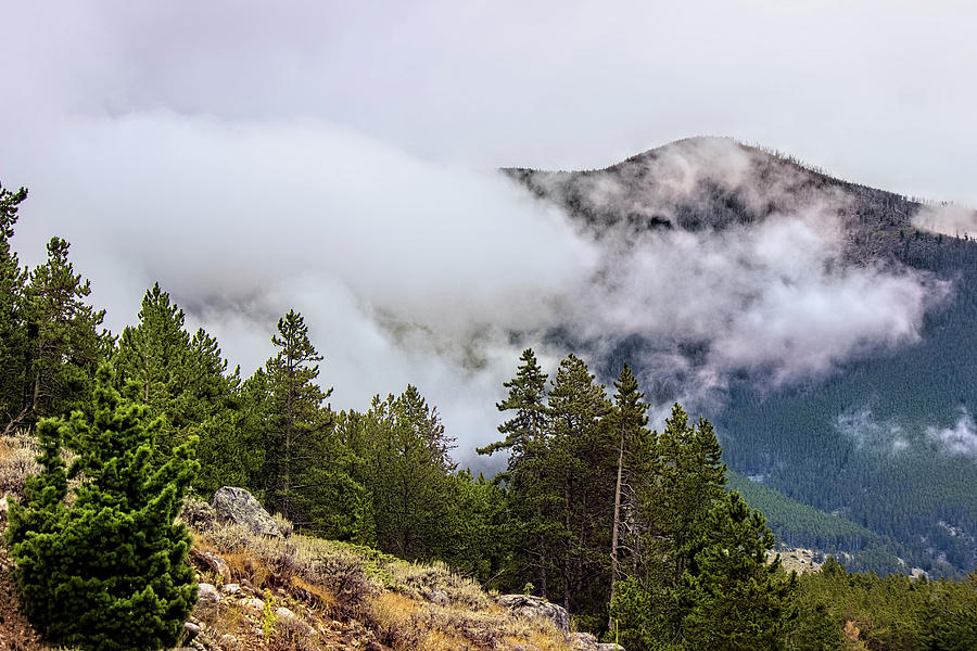 BearTooth Mountains  by Cathy Anderson