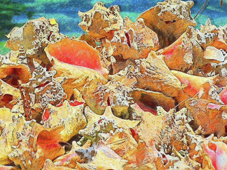 Beautiful Conchs Impressionism by Island Hoppers Art