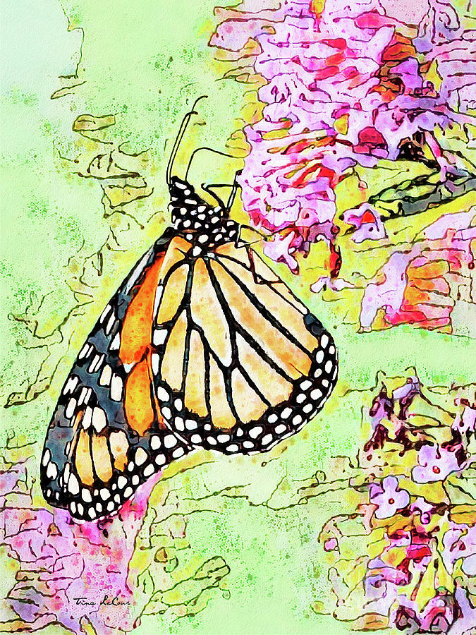 Beautiful Monarch Butterfly Mixed Media