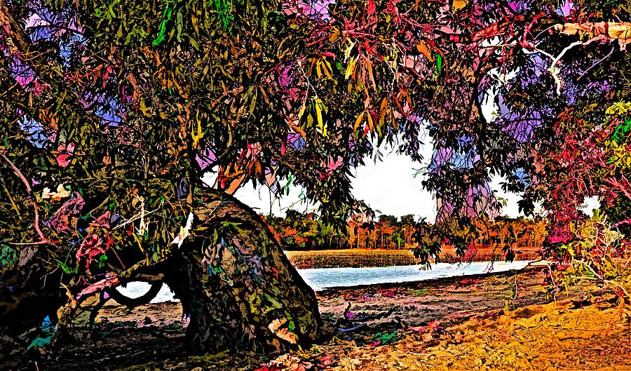 Beautiful Old Gum Takes A Rest By The Billabong by Joan Stratton