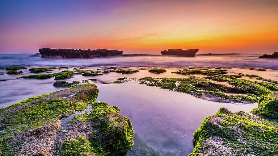 Beautiful Seaside Landscape With Moss Covered Rocks In The