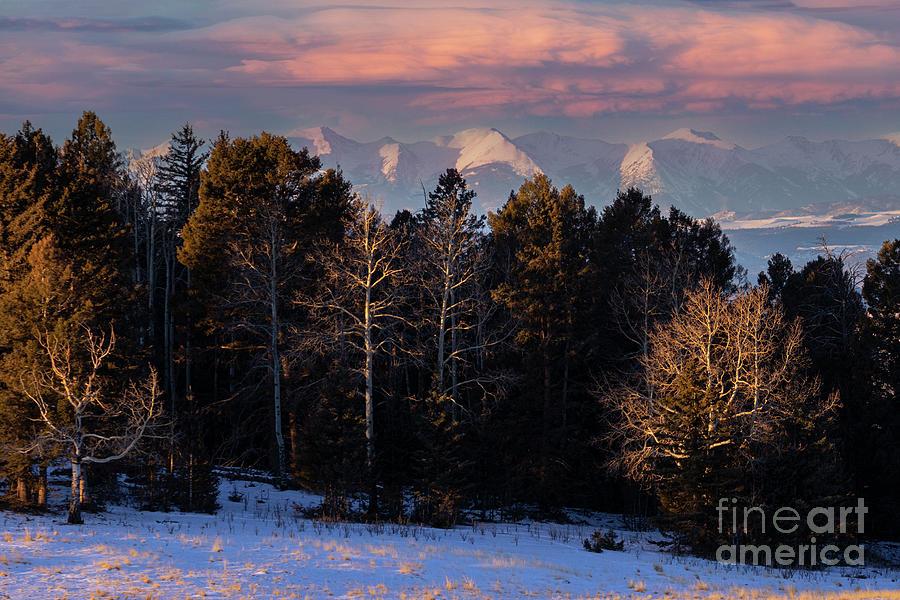 Beautiful Snowy Sangre De Cristo Mountains Photograph