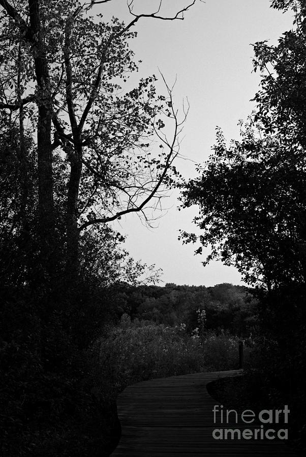 Black And White Photograph - Beauty Around The Bend - Black and White by Frank J Casella