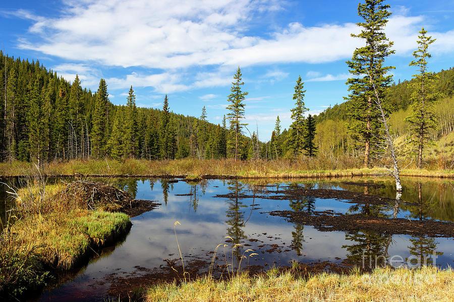 Pond Photograph - Beaver Ponds by Steven Krull