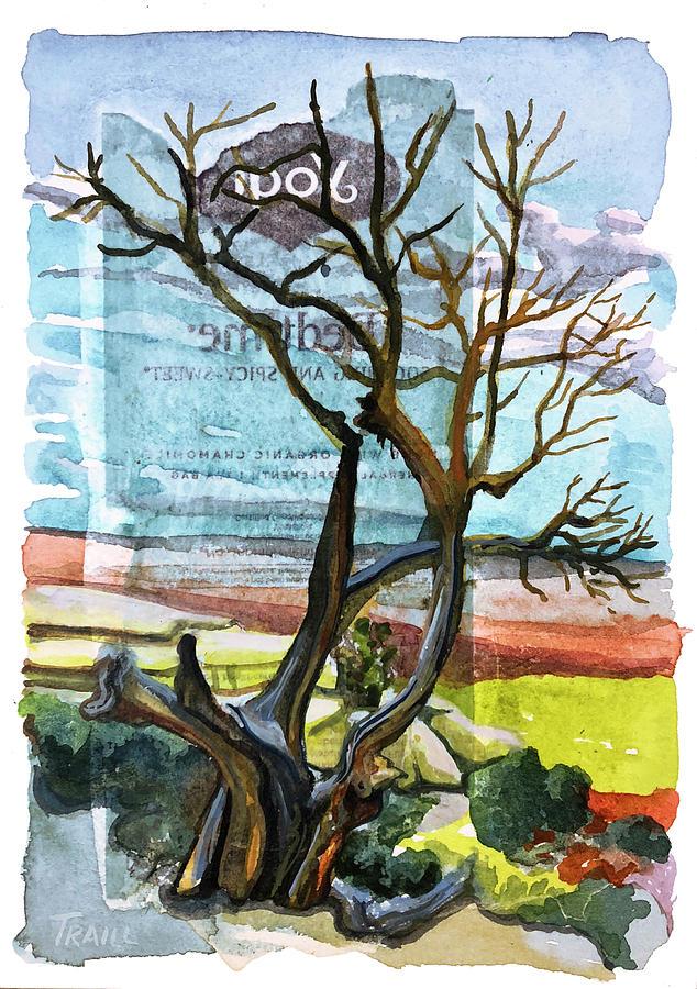 Watercolor Mixed Media - Bedtime Juniper by Jennie Traill Schaeffer