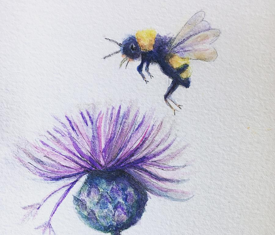 Watercolor Painting - Bee Thistle  by Sharon May Nicol