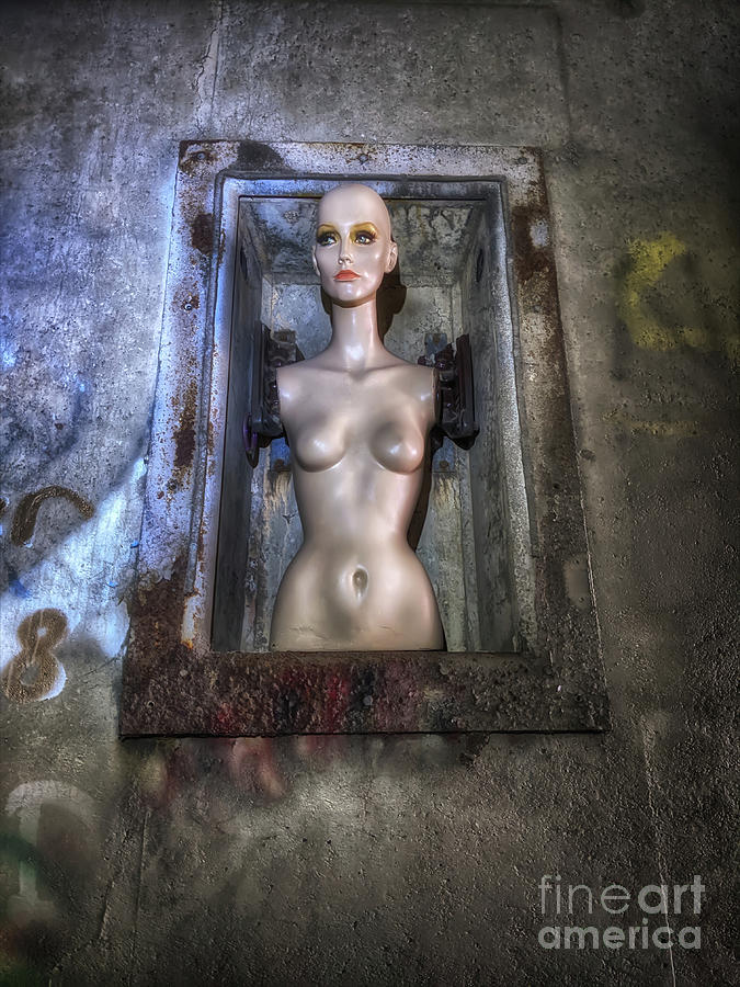 Abandoned Photograph - The Unborn  by Steven Digman