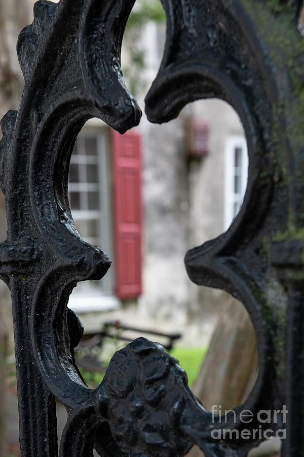 Behind The Decorative Iron - Charleston South Carolina Photograph
