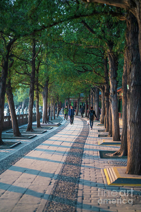 Beijing Summer Palace Afternoon Shadows by Mike Reid
