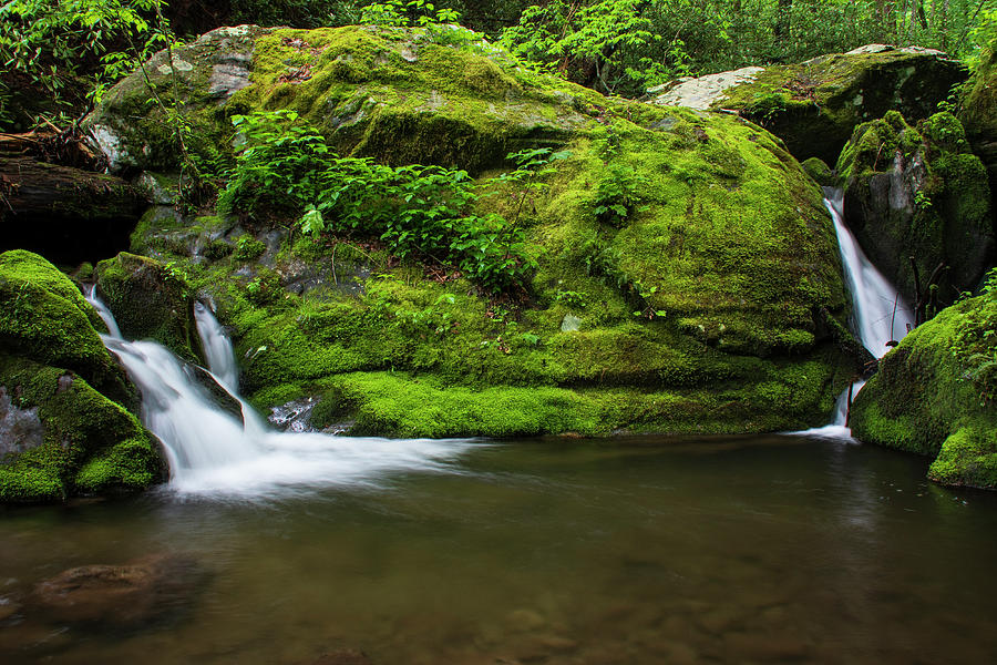 Great Smoky Mountains National Park Photograph - Below 1000 Drips 2 by Melissa Southern