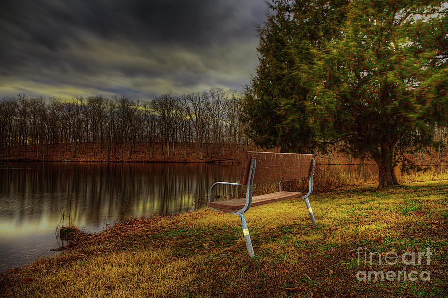 Bench by a Tree with Clouds  by Larry Braun