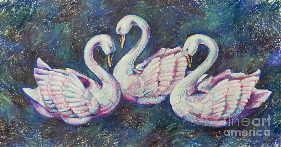 Bevy Of Swans Drawing